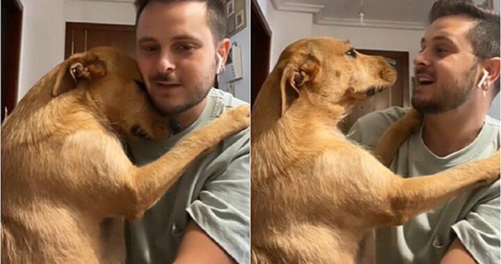 Cucciolo abbraccia il proprietario