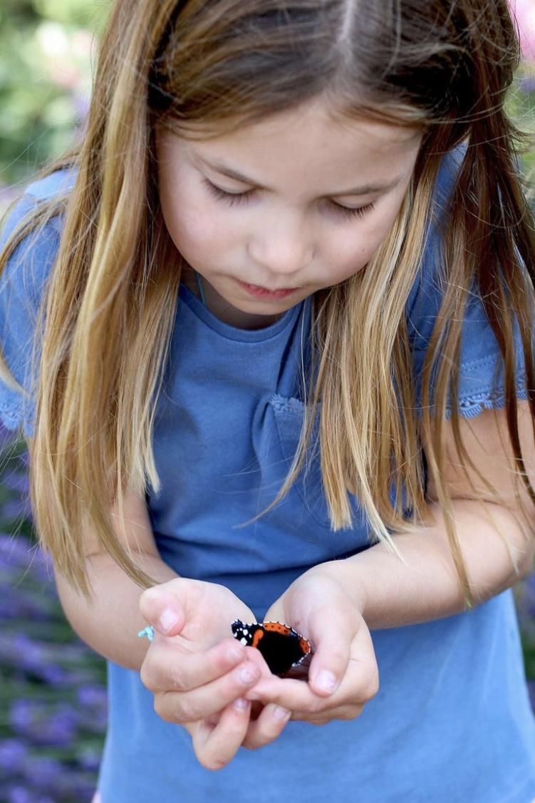 La principessina e le farfalle