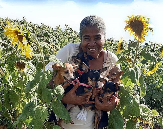 La nonna e i suoi cani
