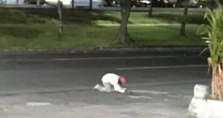 senzatetto e cane