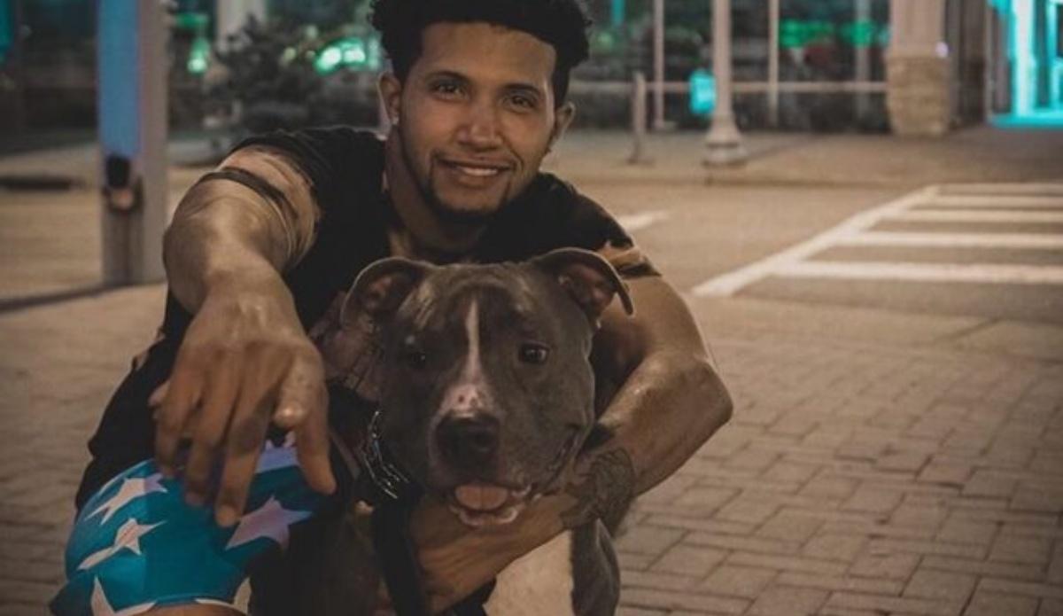 Il rapimento del cane Zink