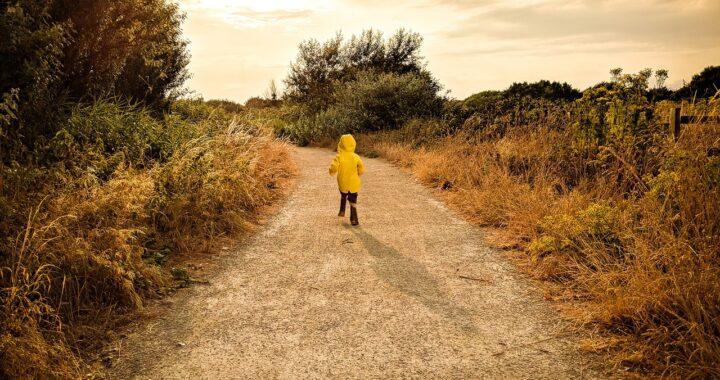 Bimbo di 3 anni smarrito nei boschi australiani