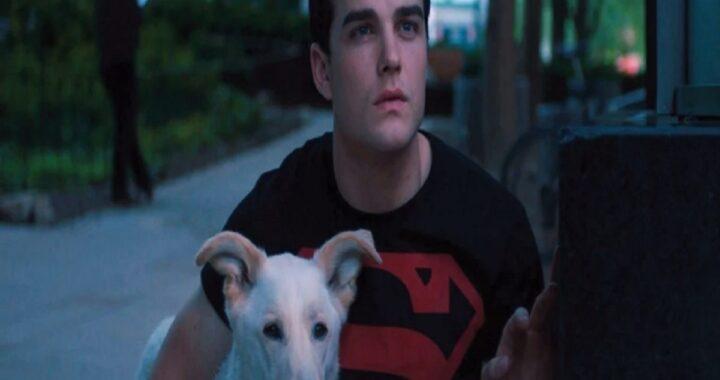 Un cucciolo in pericolo di vita per Superboy, sarà il suo aiutante