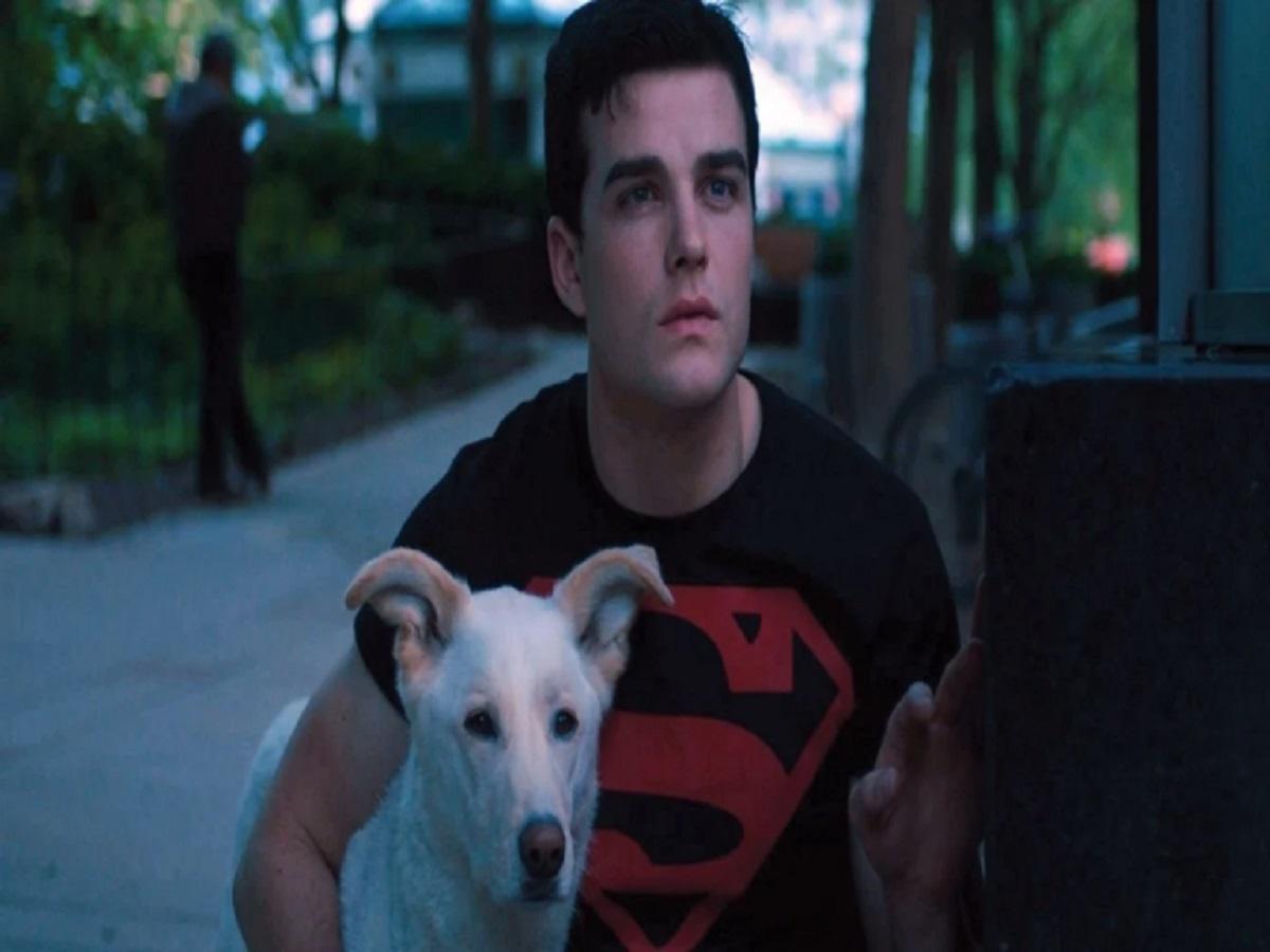 cucciolo in pericolo di vita per Superboy
