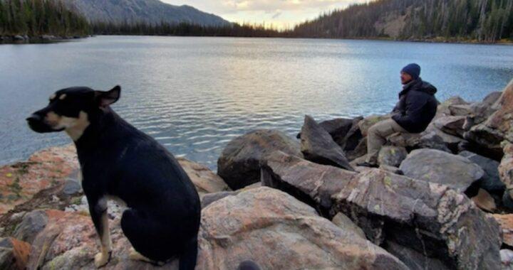 Dopo 5 giorni in montagna da sola, la piccola Stella ha potuto riabbracciare il suo amico umano
